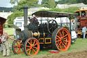 Boconnoc Steam Fair 2010, Image 138