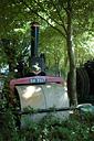 Boconnoc Steam Fair 2010, Image 147